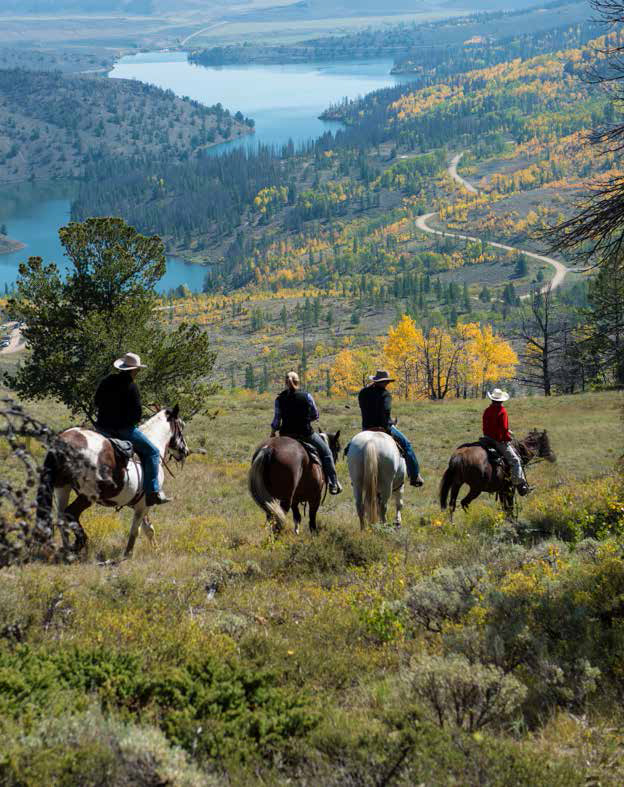 C Lazy U Ranch where eagles, elk, moose and deer roam
